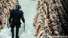 25.04.2020, El Salvador, Sonsonate: Auf diesem vom Präsidentenamt von El Salvador veröffentlichten Bild überwacht ein Polizist zahlreiche tätowierte Gefängnisinsassen, die mit Mundschutz in der Haftanstalt von Izalco auf dem Boden sitzen. Im Kampf gegen die Bandengewalt hat El Salvadors Präsident Bukele Anfang Márz eine Isolierung aller Häftlinge des Landes auf unbestimmte Zeit angeordnet. Den Chef des staatlichen Strafvollzugssystems forderte er dazu auf, einen Notstand in den Gefängnissen auszurufen. Nun hat der Staatschef in einer Twitter-Nachricht «die Anwendung tödlicher Gewalt zur Selbstverteidigung oder zur Verteidigung von Bürgern von El Salvador» genehmigt. Foto: Especial/NOTIMEX/dpa +++ dpa-Bildfunk +++ |