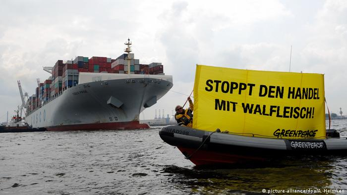 Greenpeace protesters trying to stop a cargo ship.