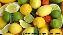 Symbolbild Zitronen, Limetten, Vitamin C