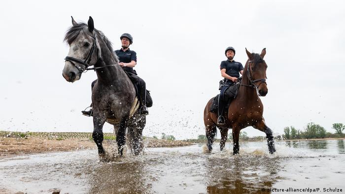 Niedersachsen Bleckede Polizei zu Pferd an der Elbe unterwegs (picture-alliance/dpa/P. Schulze)