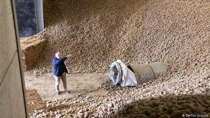 Belgien Bellegem Kartoffelbauer