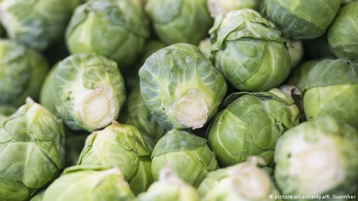 Brussels sprouts (image-alliance / dpa / R. Guenther)