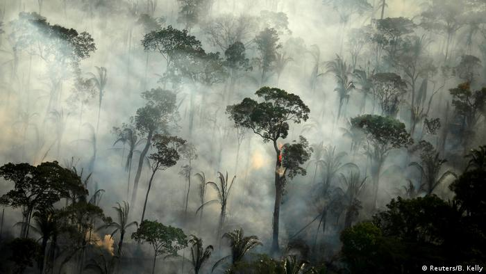 Smoke billows from a fire in the Amazon rainforest (Reuters/B. Kelly)