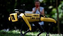 Asien Singapur Roboter Hund Park Patrouille