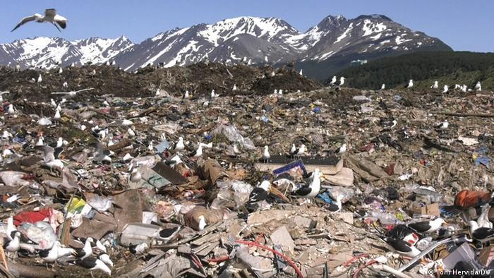 Tumpukan sampah di daerah Tierra del Fuego ini mengancam habitat penguin