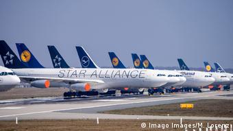 Самолеты авиакомпании Lufthansa в аэропорту Франкфурта-на-Майне