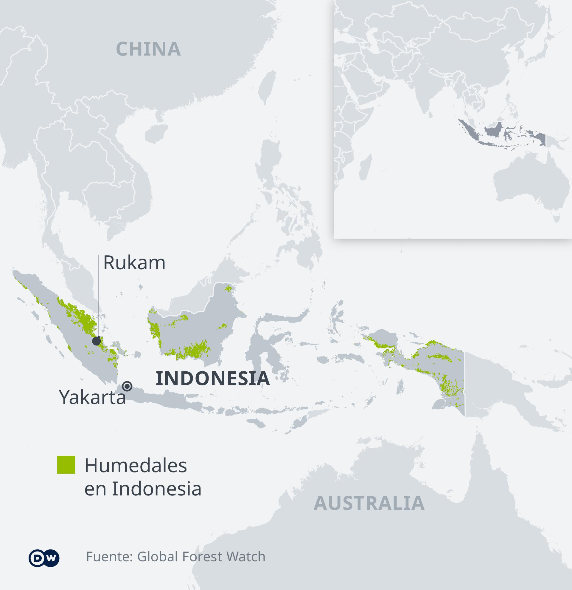 El gráfico muestra las zonas de turberas en Indonesia y la ubicación del pueblo de Rukam