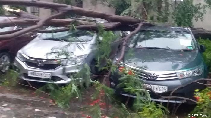 Indien Zyklon Amphan (DW/P. Tewari)