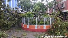 20.05.2020 *** Super Cyclone Amphan hit Kolkata on Wednesday. Sudipta Bhowmick took these photographs and willingly send these to us. He also given the copyright to us.