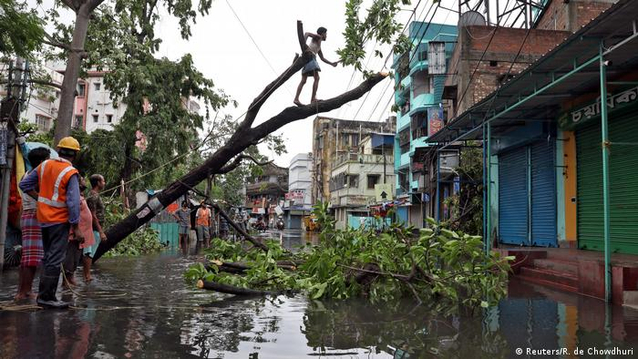 An uprooted tree on a street in Kolkata (Reuters/R. de Chowdhuri)