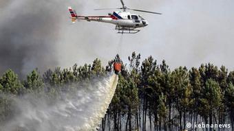 ۲۰۰ هکتار از جنگلهای گچساران سوخت