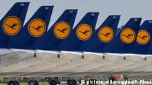 A grounded fleet of Lufthansa planes