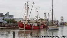 Deutschland Buesum Hafen Nordsee Krabbenkutter