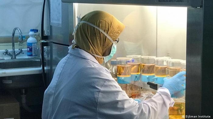 Indonesien   Eijkman Institut für Molekularbiologie forscht an einem Impfstoff für Corona (Eijkman Institute )