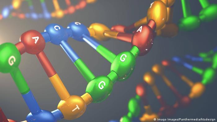 Kodiranje slike - DNA (Imago Images / PantherMedia / KDS Design)