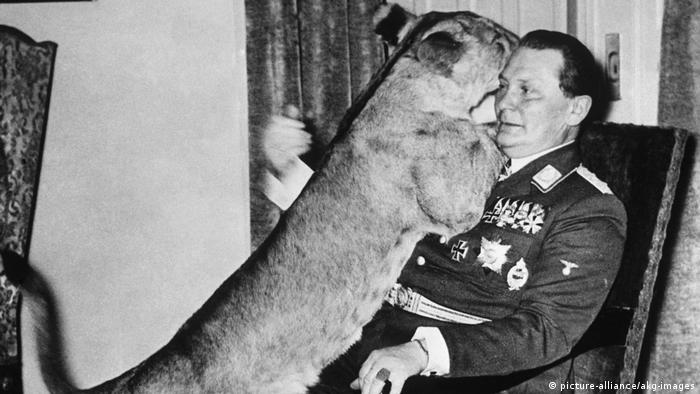 Herman Göring mit junger Löwin (picture-alliance/akg-images)