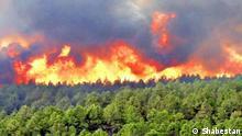 Waldbrand in Iran, Khaiz Quelle: Shabestan