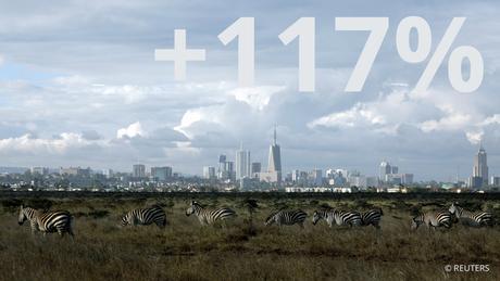 Zebras weiden in einer Steppe vor Nairobi