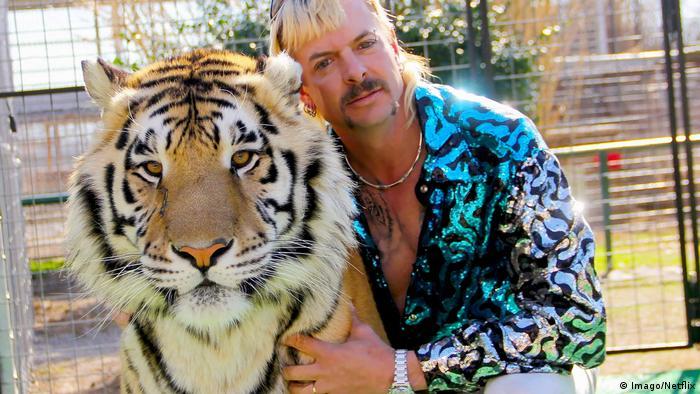 در نتفلیکس سریالی مستند پخش میشود که درباره باغ وحشی در ایالت اوکلاهما است. از زمان شیوع کرونا این باغوحش که در زبان فارسی به ببر پادشاه معروف شده، درهای خود را به روی بازدیدکنندگان بسته است و فقط برای برنامههای تلویزیونی از آن استفاده میشود. این سریال که تماشاگران زیادی هم دارد، درباره زندگی و نگهداری ۲۰۰ ببر ساکن این باغوحش است.