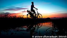 Ein junger Mann fährt am 31.07.2017 in Oldenburg (Niedersachsen) mit einem Fahrrad vor dem farbenprächtig gefärbten Abendhimmel über einen Feldweg und spiegelt sich dabei in einer Pfütze. Foto: Hauke-Christian Dittrich/dpa | Verwendung weltweit