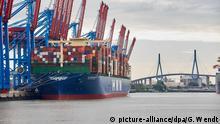 07.06.2020, Hamburg: Weltgrößtes Containerschiff «HMM Algeciras» liegt am Burchardkai Container Terminal im Waltershofer Hafen. Im Hintergrund ist die Köhlbrandbrücke zu sehen. Foto: Georg Wendt | Verwendung weltweit