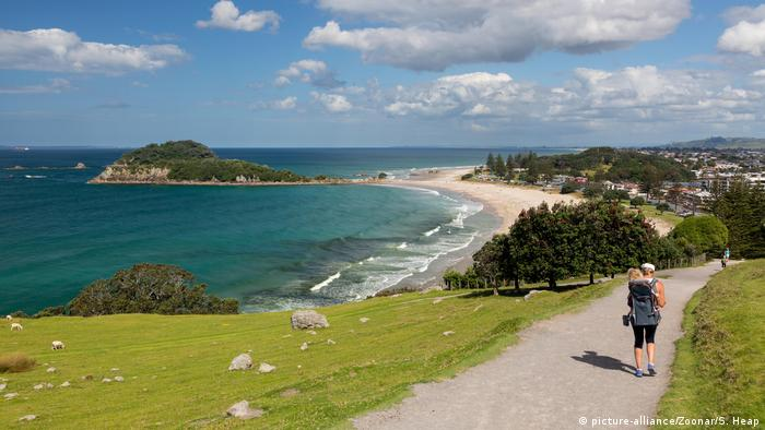 Paseante en la costa de Nueva Zelanda
