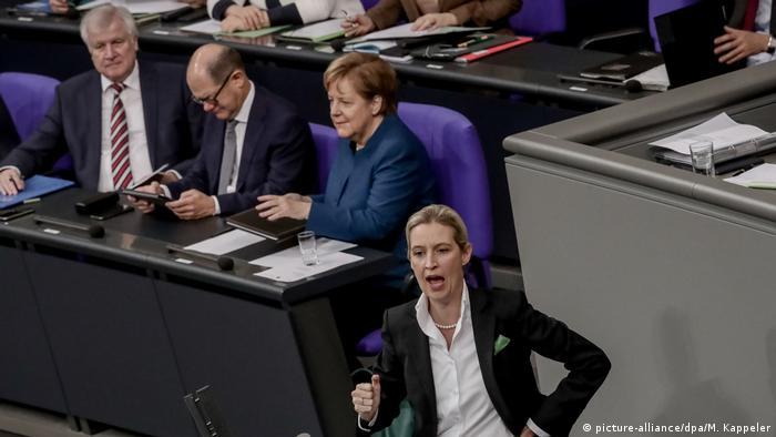 Deutschland Bundestag Seehofer AfD