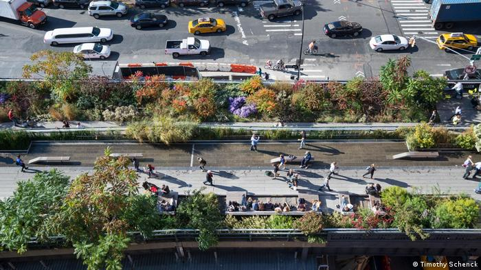 A view from above of a New York street lined with new greenery