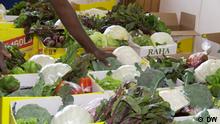 Eco Africa Online-Bestellung von Lebensmitteln in Simbabwe während des Coronavirus