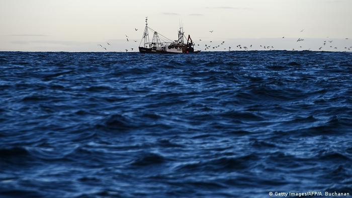 Schottland | Brexit | EU-Fischerei (Getty Images/AFP/A. Buchanan)
