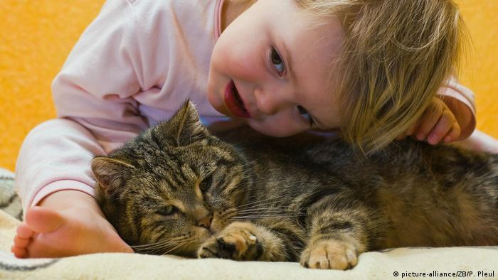 toddler cuddling a tabby cat