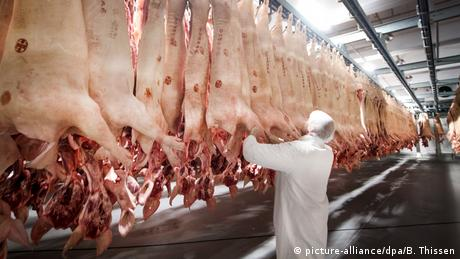 A worker attends to hanging pig carcasses at the Tönnies slaughterhouse in 2017. (picture-alliance/dpa/B. Thissen)