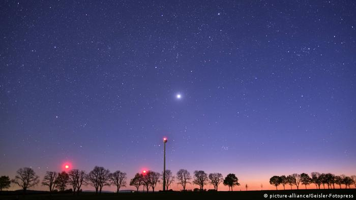 a row of trees, and a night sky with stars above it (picture-alliance/Geisler-Fotopress)