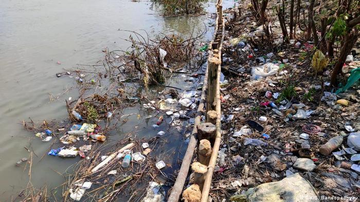 Indien Hingalganj | Umweltverschmutzung bei Sundarbans: Plastikmüll wird entfernt