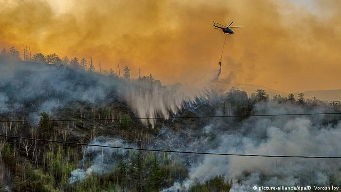 Лесной пожар на Камчатке, 10 июня 2020 года