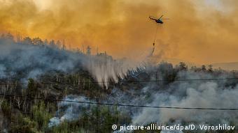Лесной пожар на Камчатке