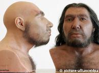 Reconstituições do Homem de Neandertal, no Museu Renano de Bonn, segundo indícios científicos