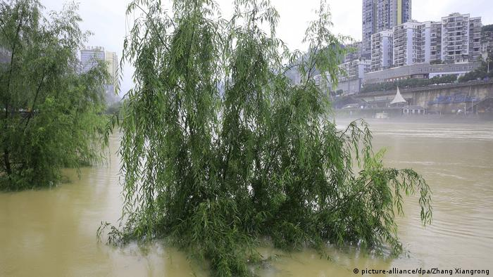 Hochwasser in China (picture-alliance/dpa/Zhang Xiangrong)