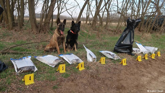 Perros detectores de crímenes contra la vida silvestre en Hungría.