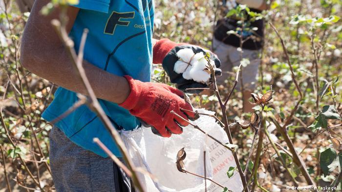 Mevsimlik işçi