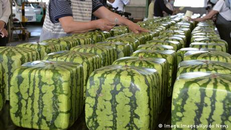 BdTD Japan Verkauf von eckigen Melonen in Zentsuji (Imago Images/Kyodo News)