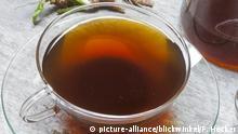 Eine Glastasse mit wässrigem Kaffee aus der Zichorie-Pflanze