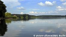 Deutschland Naturpark bei Lychen Oberpfuhlsee