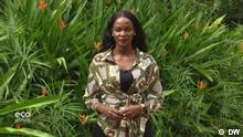 Sandrah Twinoburyo, presenter on Eco Africa
