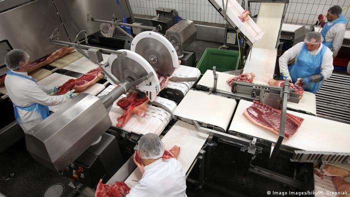 Schweinerippen werden an großen Sägen in einem Schlachthaus zerteilt