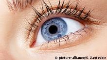 Symbolbild I Anatomie I menschliches Auge