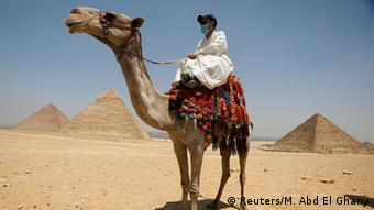 Мужчина в медицинской маске сидит на верблюде около пирамид в Гизе