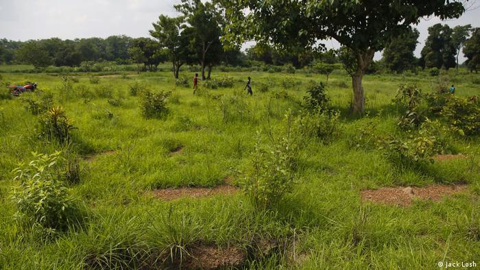 Zentralafrikanische Republik Massengrab Massaker Bossangoa (Jack Losh)