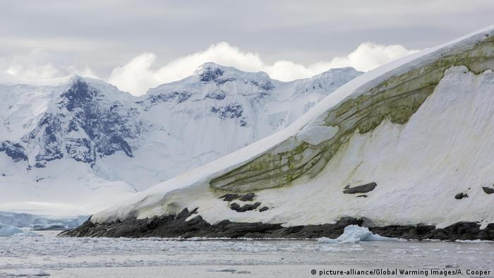 Glacial scenery and green algae in the ice on Useful Island, Gerlache Strasit, Antarctic Peninsula
