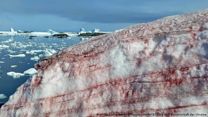 A glacier in Antarctica striped with red ice
